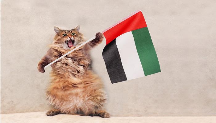 2018 UAE National Day Logo